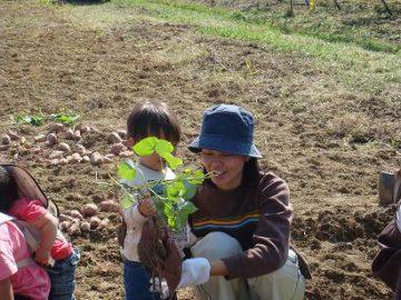 秋満喫!野菜の収穫に行こう!
