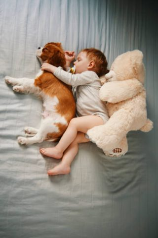 健康的な睡眠時間は?