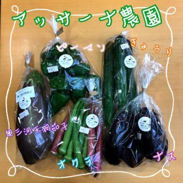 アッサーナ農園の新鮮野菜