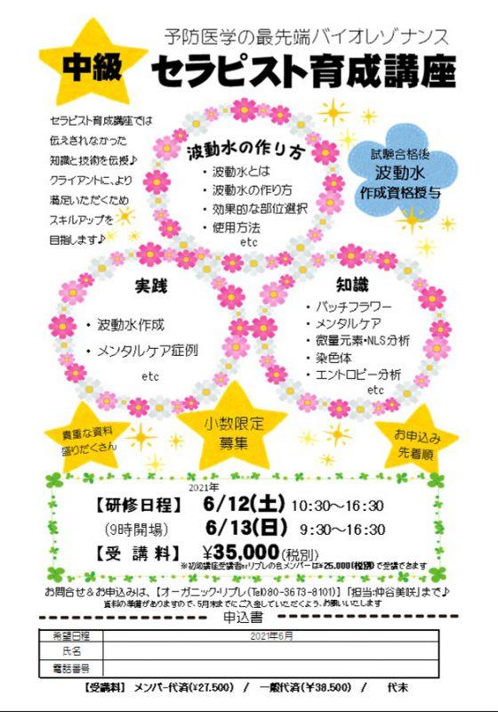 中級セラピスト育成講座・春 (2日目)